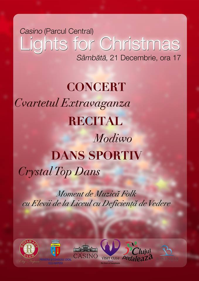 lights-for-christmas