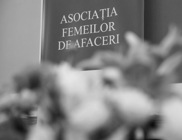 Gala Excelentei Feminine 2017 (2)